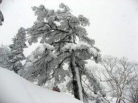 Nishiho07
