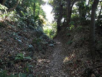 Daibutsu18