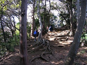 Kamakura04
