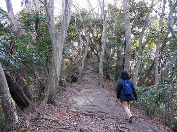 Kamakura13