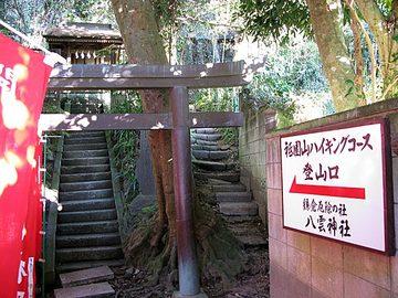 Kamakura19