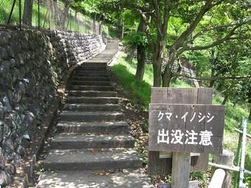 Iwadono04