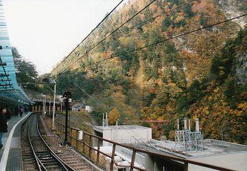 Kuroyon16