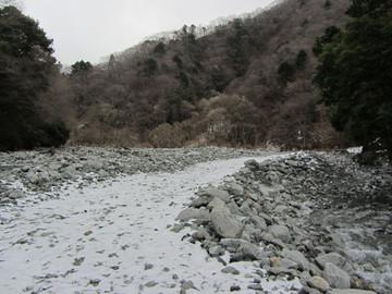 Hinokibora03