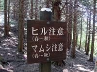 Tan_syu06