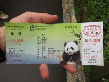 Panda001